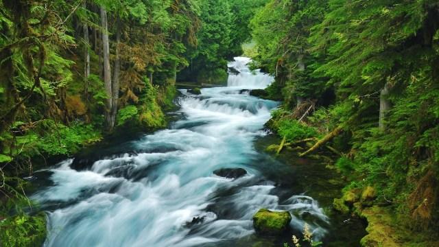Kata Mutiara Bahasa Inggris Tentang Sungai Rivers Dan Artinya Hastag Campus